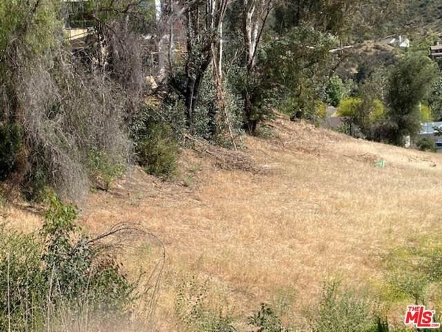 29836 Triunfo Dr, Agoura Hills, CA 91301 (#21-735788) :: Randy Plaice and Associates