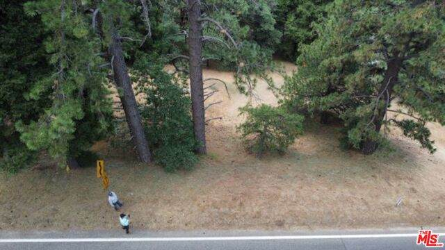 0 Crest Forest Dr - Photo 1