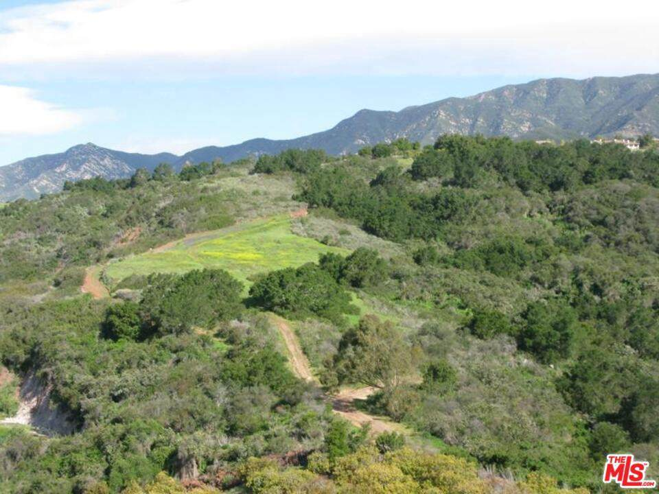 3589 Toro Canyon Park Rd - Photo 1