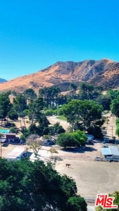 26129 Ravenhill Road, Canyon Country, CA 91387 (#19475112) :: Lydia Gable Realty Group