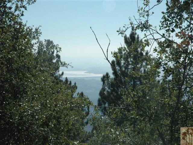0 Double View Drive, Idyllwild, CA 92549 (#41432232) :: Lydia Gable Realty Group