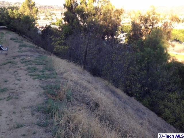 0 Mimosa Drive, Los Angeles (City), CA 90065 (#315009454) :: The Fineman Suarez Team