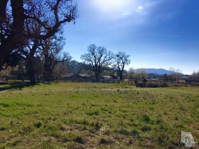 Bear Valley Road Lot Ptn1, Tehachapi, CA 93561 (#217004784) :: Lydia Gable Realty Group