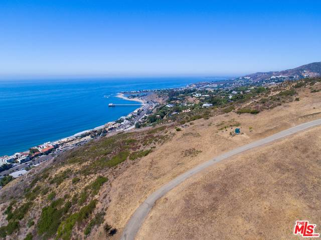 2860 Sweetwater Mesa Rd, Malibu, CA 90265 (#20-640808) :: Lydia Gable Realty Group