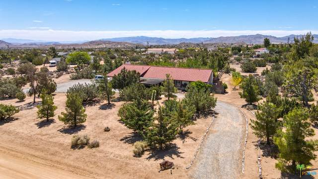 56607 Chipmunk Trl, Yucca Valley, CA 92284 (MLS #21-737598) :: Hacienda Agency Inc