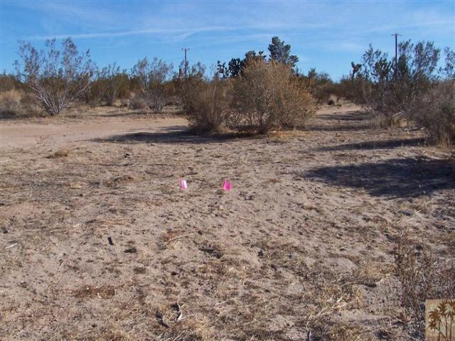 0 Old Woman Springs Road, Yucca Valley, CA 92285 (#41445201) :: Lydia Gable Realty Group
