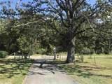 347 Acres - Photo 4