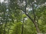 30 Birch - Photo 12