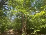 30 Birch - Photo 5