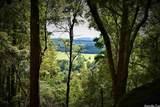 0 Ragweed Valley - Photo 15