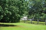20923 Country Creek - Photo 32