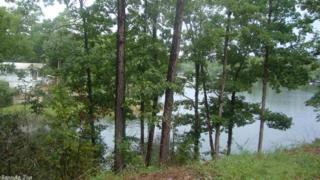 38 Trout, Alexander, AR 72002 (MLS #16022884) :: Truman Ball & Associates - Realtors® and First National Realty of Arkansas