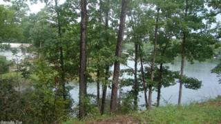 36 Trout, Alexander, AR 72002 (MLS #16023319) :: Truman Ball & Associates - Realtors® and First National Realty of Arkansas