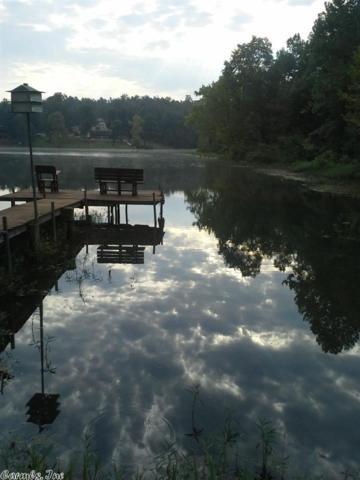 39 Monongahela, Cherokee Village, AR 72529 (MLS #10366103) :: Truman Ball & Associates - Realtors® and First National Realty of Arkansas