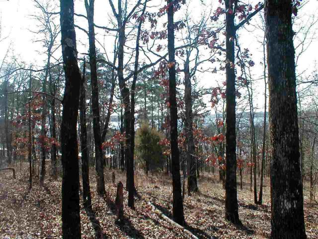 42 Crappie, Conway, AR 72032 (MLS #10389947) :: United Country Real Estate