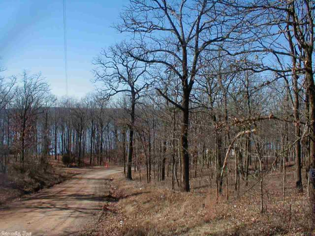 43 Crappie, Conway, AR 73032 (MLS #10389950) :: United Country Real Estate
