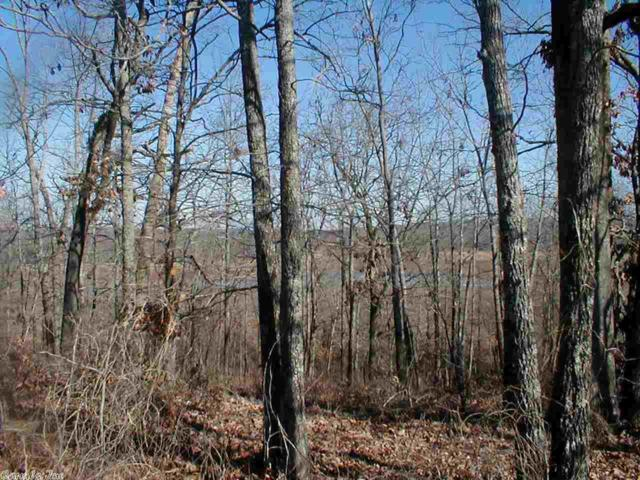 46 Crappie, Conway, AR 72032 (MLS #10389956) :: United Country Real Estate