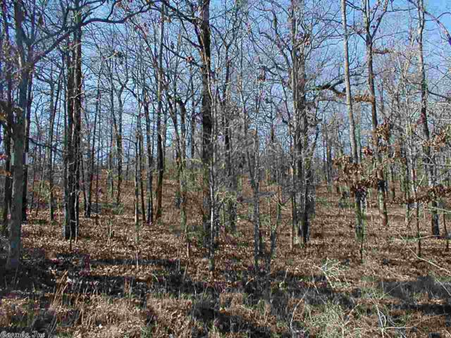 56 Fox Ridge, Conway, AR 72032 (MLS #10389990) :: United Country Real Estate