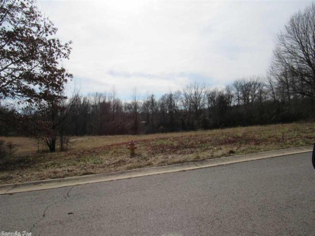 79 Country, Morrilton, AR 72110 (MLS #18003041) :: United Country Real Estate