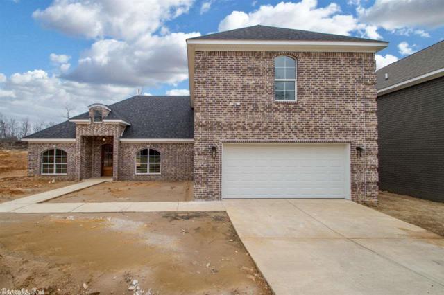 6905 Grace Village Drive, Alexander, AR 72002 (MLS #18005098) :: Truman Ball & Associates - Realtors® and First National Realty of Arkansas