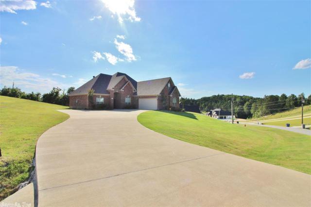 9041 Stone Canyon, Alexander, AR 72002 (MLS #18019866) :: Truman Ball & Associates - Realtors® and First National Realty of Arkansas