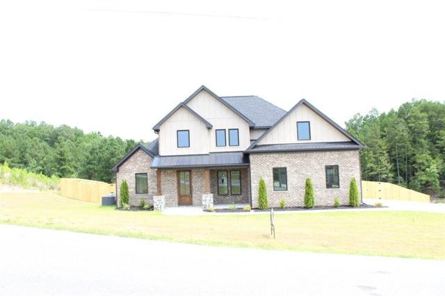 9080 Stone Canyon, Alexander, AR 72002 (MLS #18022613) :: Truman Ball & Associates - Realtors® and First National Realty of Arkansas