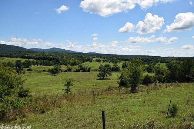Polk Road 86, Mena, AR 71953 (MLS #18024311) :: Truman Ball & Associates - Realtors® and First National Realty of Arkansas