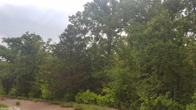 N Saginaw, Cherokee Village, AR 72529 (MLS #18032716) :: United Country Real Estate