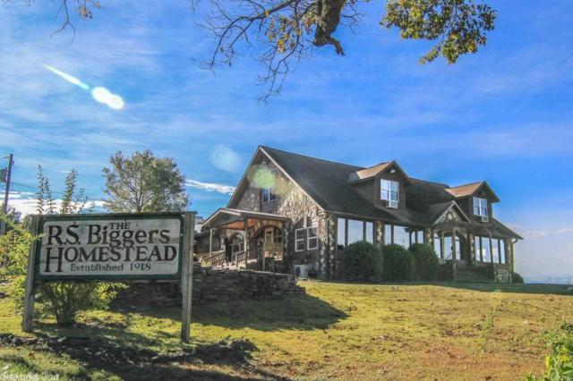 20 Bluff, Hardy, AR 72542 (MLS #18036214) :: Truman Ball & Associates - Realtors® and First National Realty of Arkansas