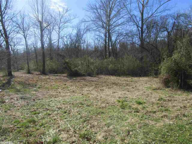 12 White Water Estates, Mountain View, AR 72560 (MLS #19005193) :: United Country Real Estate