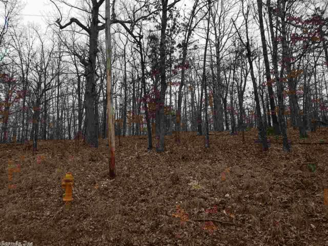 Shoshone Drive, Cherokee Village, AR 72529 (MLS #19007716) :: United Country Real Estate