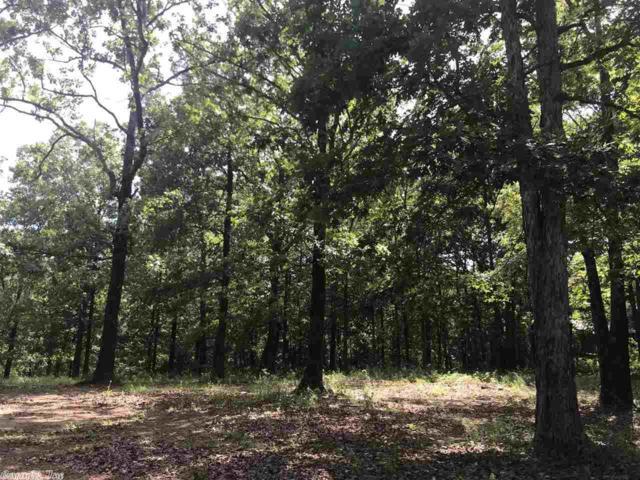 1315 Trailwood, Heber Springs, AR 72543 (MLS #19018821) :: Truman Ball & Associates - Realtors® and First National Realty of Arkansas