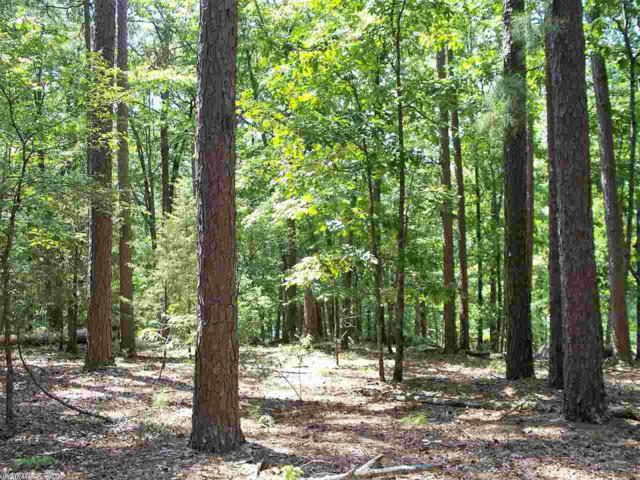 333 Grand Isle Drive, Fairfield Bay, AR 72088 (MLS #19025537) :: United Country Real Estate