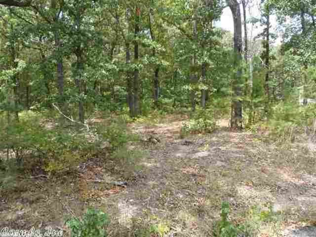 7 Trace Dr., Greers Ferry, AR 72067 (MLS #19034344) :: United Country Real Estate