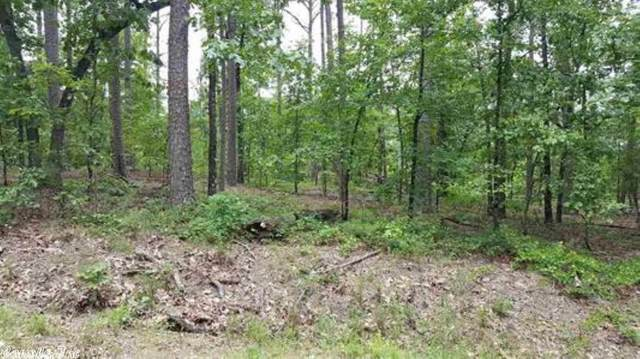 291 Pyrenees, Hot Springs Village, AR 71909 (MLS #20004217) :: United Country Real Estate