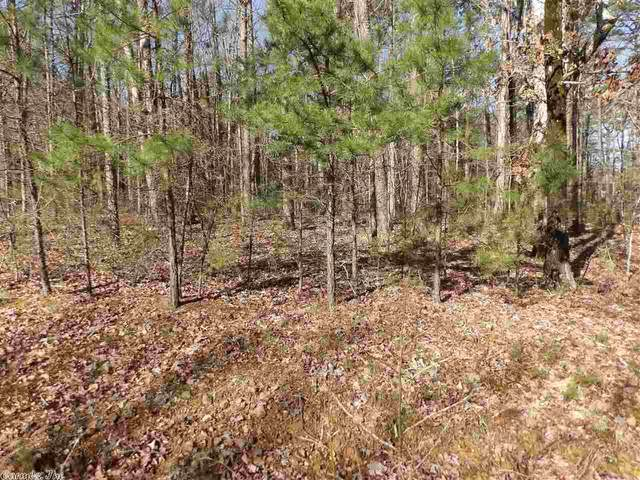 22 Red Fox Road, Greers Ferry, AR 72067 (MLS #20009109) :: United Country Real Estate