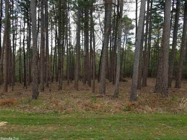 53 View, Shirley, AR 72153 (MLS #20010914) :: United Country Real Estate