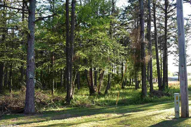 0 Eagle Point, Quitman, AR 72131 (MLS #20011562) :: United Country Real Estate