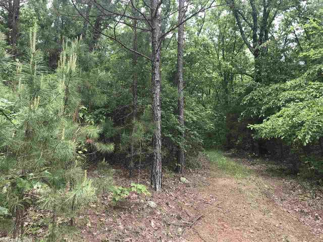 205 Oak Ridge Drive, Fairfield Bay, AR 72088 (MLS #20014914) :: United Country Real Estate