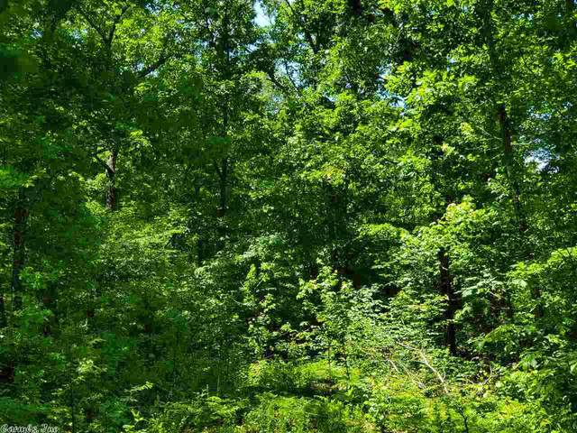 6 Pole Ranch Spur, Shirley, AR 72153 (MLS #20016451) :: United Country Real Estate