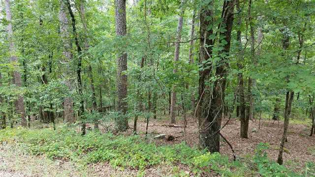 57 Devaca Way, Hot Springs Village, AR 71909 (MLS #20019014) :: United Country Real Estate