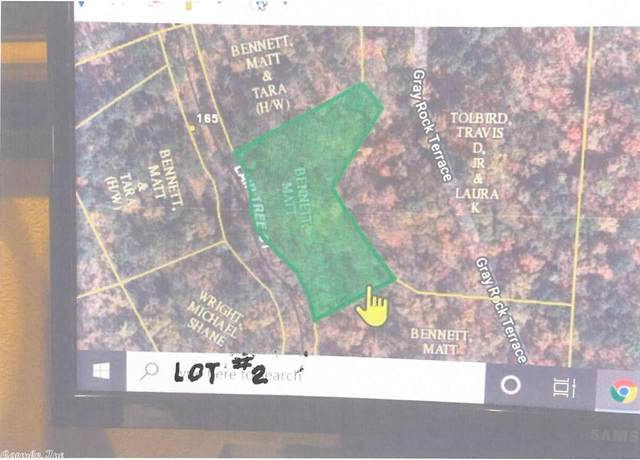 2 Lair Tree, Mountain Pine, AR 71956 (MLS #20021002) :: United Country Real Estate