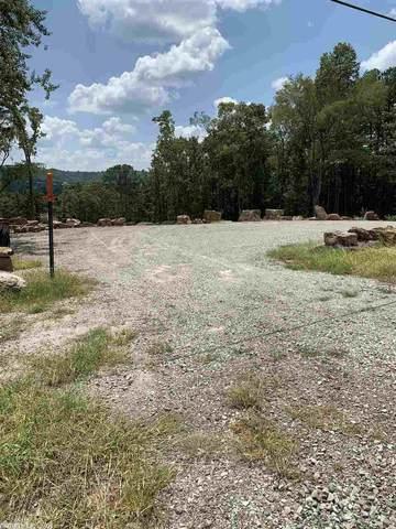 7 Hwy 110, Heber Springs, AR 72543 (MLS #20026132) :: United Country Real Estate