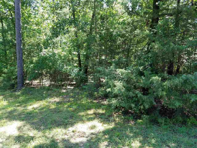 0 Corsica Ct, Fairfield Bay, AR 72088 (MLS #20026254) :: United Country Real Estate