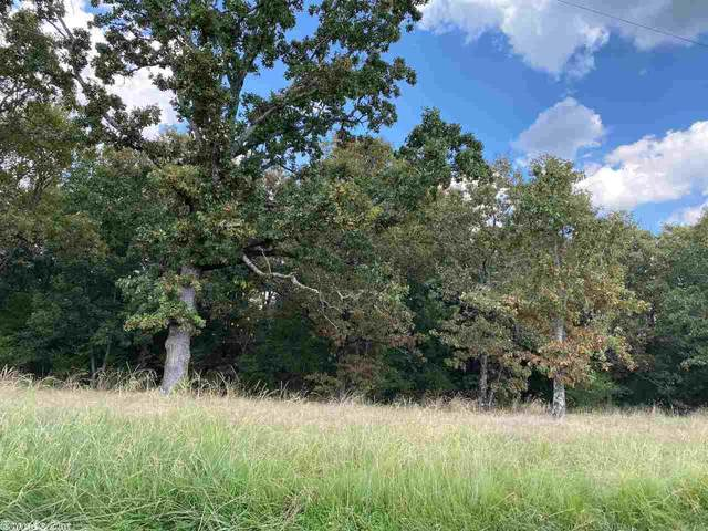 400 E Grandview, Conway, AR 72032 (MLS #20026501) :: United Country Real Estate