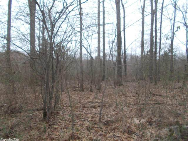 233 St Annes, Benton, AR 72015 (MLS #20026556) :: United Country Real Estate