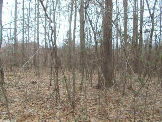 234 St Annes, Benton, AR 72015 (MLS #20026557) :: United Country Real Estate