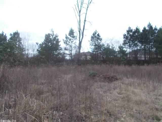 48 Sahalee, Benton, AR 72015 (MLS #20026775) :: United Country Real Estate
