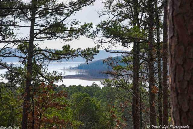1 Miller's Point Road, Greers Ferry, AR 72067 (MLS #20029645) :: United Country Real Estate