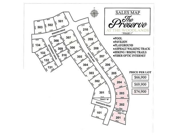 206 Nature Way, Benton, AR 72019 (MLS #20030328) :: United Country Real Estate